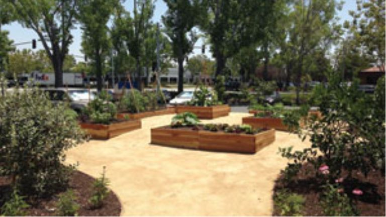 commercial edible gardens