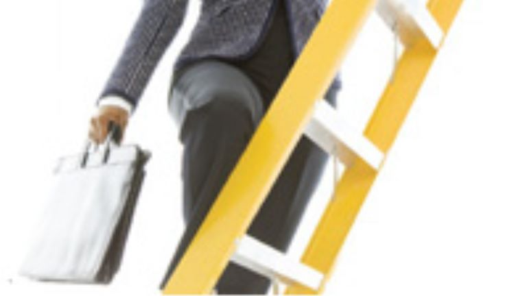 professional woman climbing a ladder