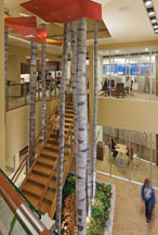two story staircase with trees in an office building