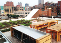 garden and planters on a building roof