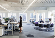 healthy sustainable office environment