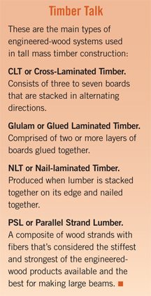 types of timber construction